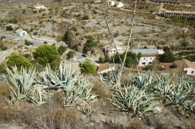 Ausblick Lubrin