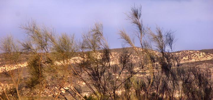Aussichtspunkt Sorbas, Andalusien