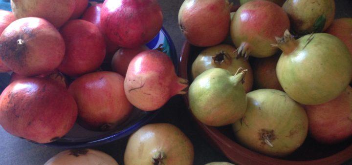 Granatäpfel für den Gelee